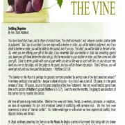 The May 5, 2019 edition of The Vine, a monthly newsletter published by Murrieta United Methodist Church.